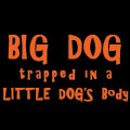 Big Dog trapped in a LITTLE DOG's body!