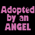 Adopted by an Angel