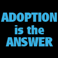 ADOPTION is the Answer