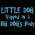Little Dog trapped in a BIG DOG's body!