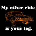 My Other Ride is Your Leg!